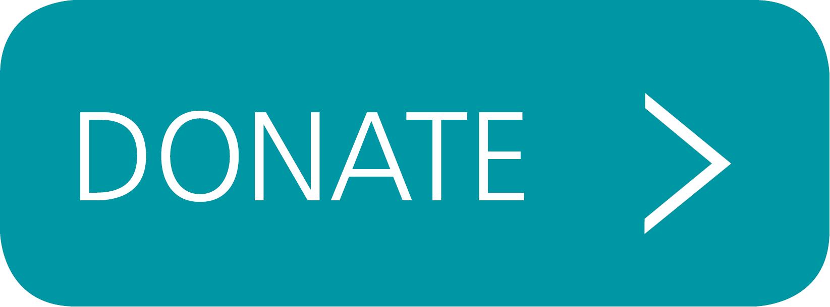 Stripe Donation Button
